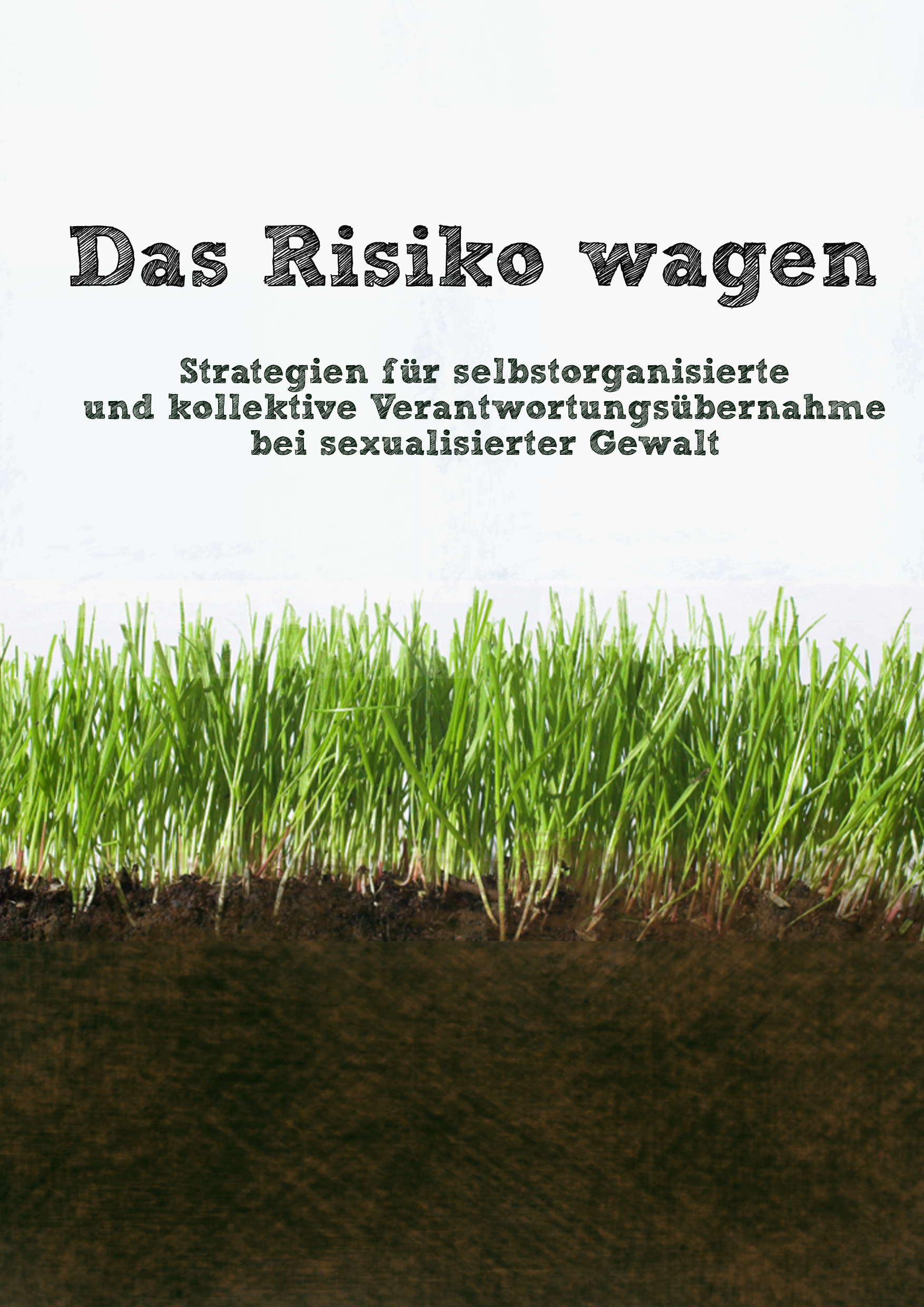 "image of grass, above the title of the zine in German: ""Das Risiko wagen. Strategien für selbstorganisierte und kollektive Verantwortungsübernahme bei sexualisierter Gewalt"""